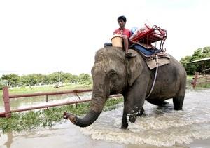 El territorio tailandés, en plena estación lluviosa, lleva soportando inundaciones que han matado en total a 80 personas.