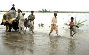 Las torrenciales lluvias monzónicas de este año han dejado hasta hoy más de 200 muertos, millones de afectados y cientos de miles de viviendas destruidas en Pakistán, donde la situación es alarmante.