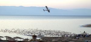 'Amo Israel y hago esto por salvar el Mar Muerto, que en cincuenta años podría desaparecer', dijo más tarde a la prensa el creador neoyorquino, que destacó que se trata del 'único país de Oriente Medio donde se puede efectuar este trabajo'.