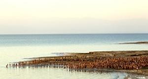El artista estadounidense Spencer Tunick, famoso por sus retratos de desnudos colectivos, fotografió a un millar de personas sin ropa y a la luz del amanecer en la orilla israelí del Mar Muerto, el lugar más bajo del planeta.