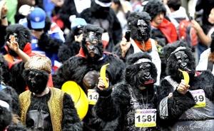 La Carrera Anual de Gorilas, busca recaudar fondos para 'The Gorilla Organisation'.