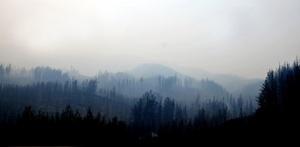 Piñera anunció también que su gobierno dispuso la incorporación de dos mil brigadistas, cinco helicópteros y dos aviones cisterna para el combate al fuego en los incendios forestales en las Regiones del Maule, Bío Bío y La Araucanía.