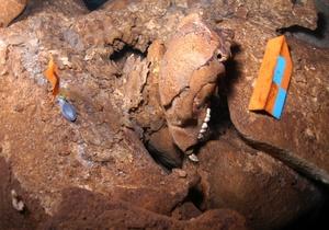 Por primera vez se presentan al público las imágenes en video del interior de una caverna sumergida de Yucatán, donde reposan desde hace 12 mil años, cuatro cráneos completos y mandíbulas de osos, semejantes a los de una especie ya extinta en América, así como los restos óseos de seis humanos que podrían tener la misma antigüedad.