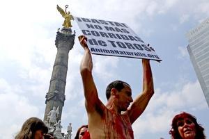 Llegaron a la plaza unidos por palos con los colores de la bandera mexicana que simulaban banderillas, y permanecieron en el suelo durante cerca de una hora, en completo silencio y mientras otros activistas coreaban lemas contra las corridas de toros.