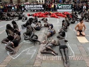 BOG05. BOGOTÁ (COLOMBIA), 09/02/2012.- Unas 70 personas semidesnudas y pintadas de rojo y negro se manifiestan para reclamar el fin de las corridas de toros en el país hoy, jueves 9 de febrero de 2012, en la Plaza de Bolívar de Bogotá (Colombia). El debate antitaurino resucitó en Colombia a mediados de enero cuando arrancó la temporada de toros en una de sus plazas predilectas, la de Santamaría en Bogotá, y tuvo su germen en la decisión del nuevo alcalde capitalino, Gustavo Petro, de no ocupar el palco de la Alcaldía. EFE/Mauricio Dueñas