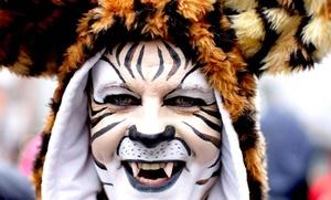 Muchos carnavalistas se decidieron a disfrazarse como muñecos de peluche debido a las temperaturas gélidas de esta época del año, lo que generalmente no los desanima en su propósito de divertirse.