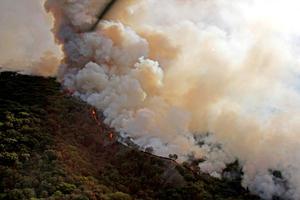 """El humo de los incendios forestales está compuesto de una mezcla de gases y partículas microscópicas que se desprenden de la vegetación en llamas, que pueden afectar los ojos, irritar el sistema respiratorio y agravar las afecciones de personas que padecen de enfermedades cardíacas y pulmonares crónicas""""."""