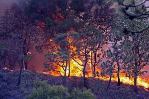 El Presidente Felipe Calderón Hinojosa informó que el incendio en Jalisco se ha controlado en 80%.