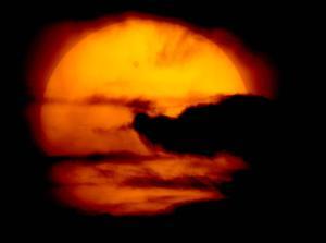 En México, un centenar de personas se formó dos horas antes de que iniciara el fenómeno para poder observarlo con telescopios o gafas especiales en uno de los puntos de observación instalados para ese fin.