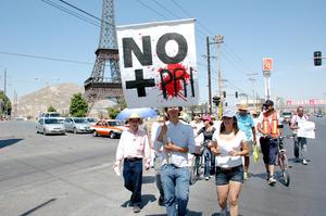 Estudiantes, personas de la tercera edad y miembros de diferentes organizaciones se sumaron a la manifestación por calles de toda la Comarca.