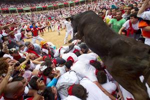 Los mozos son alcanzados por los toros en la plaza taurina.