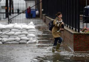 Los estados de Delaware, Rhode Island, Pensilvania, Connecticut, Virginia, Nueva Jersey, Nueva York, Maryland y el Distrito Federal (DC) han sido declarados en estado de emergencia.