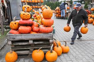 Las famosas alabazas con motivo de Halloween decoraron  hogares en todo el mundo.