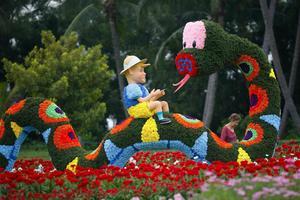 """Una mujer visita la exposición del Festival de Flores de Sentosa en Singapur. El tema central del festival este año es """"La alegría de la primavera"""" y centra especial atención en la serpiente, animal del zodiaco chino que este Año Nuevo Lunar toma el relevo del Dragón."""