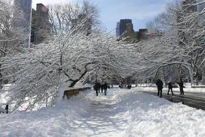 La precipitación arrojó hasta casi un metro (3 pies) de nieve y desató ráfagas de viento que dejaron sin electricidad a cientos de miles de personas.