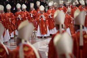 Los cardenales fueron llamados a colaborar en la edificación de la unidad de la Iglesia, ya que para realizarla es necesario el trabajo de cada articulación, según la energía propia de cada miembro, de acuerdo a lo dicho por quien ofició la misa.