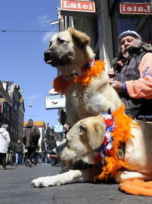 Las calles de Holanda se tiñeron de naranja en celebración por su nuevo rey.