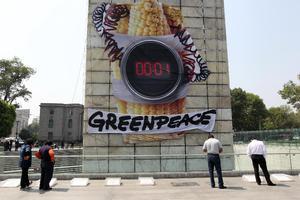 Poco después de las 7:00 horas, ecologistas, quienes previamente se entrenaron para subir alrededor de 70 metros de altura, iniciaron la protesta.