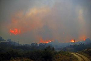 El incendio ha arrasado unas 800 hectáreas de bosque, según ha informado el portavoz de la división forestal del estado de Arizona.