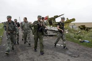 Los rebeldes prorrusos han sido considerados como posibles responsables del derrumbe del avión malayo; sin embargo esto no se ha podido comprobar.