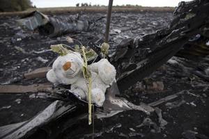 Con el accidente de un avión de la compañía argelina Air Algérie ocurrido el jueves en la madrugada, julio se convierte en un mes negro para la aviación con al menos 368 personas muertas, sin incluir los desaparecidos en esta última tragedia.