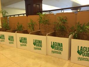 En esta segunda edición se pretende plantar 25 mil árboles.