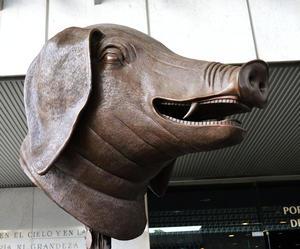 Cerdo, cada una de las cabezas que integran la exposición tiene un peso de 350 kilos.