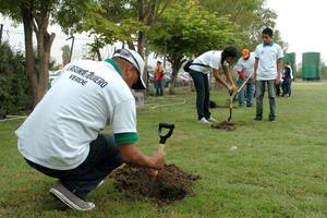 Ciudadanos han plantado su árbol contribuyendo así con este proyecto.