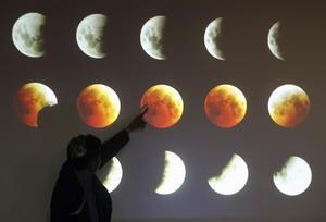 Las distintas fases del eclipse causaron asombro.