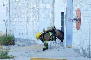 Para ingresar a la parte posterior de la empresa fue necesario que los Bomberos hicieron hoyos en la pared.