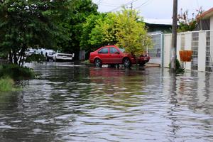 Alberto Porragas, titular de Protección Civil, consideró que se trata de inundaciones graves porque el agua brincó el cordón de la banqueta.
