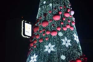 El árbol cuenta con esferas gigantes y miles de luces.