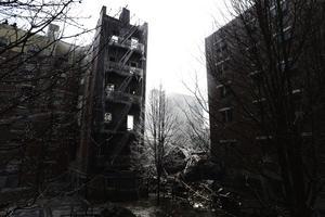 12 de marzo | Explosión en Harlem. Una fuerte explosión provocó un incendio que terminó por derrumbar dos edificios en el norte de Manhattan, Nueva York. Como saldo se registraron 8 muertos y 74 heridos.