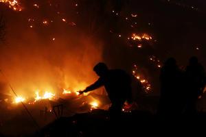 12 de abril | Incendio en Valparaíso. Considerado como el mayor incendio urbano en la historia de Chile; el fuego afectó a 12 barrios, destruyó a su paso 29 mil viviendas, 12 mil 500 personas damnificadas, 15 muertos y medio millar de heridos.