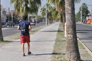 En el bulevar Laguna en el tramo de la colonia Lázaro Cárdenas, los espacios verdes no son atendidos.