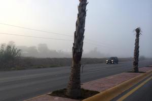 Varias vialidades de La Laguna presentaron poca visibilidad.