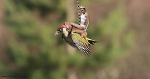 Algunos usuarios se acordaron del exitoso video 'Wrecking Ball' de Miley Cirus