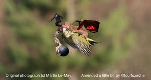 Estos son algunos de los montajes hechos con la imagen y algunas fotografías en las que se inspiraron los protagonistas de este viaje.