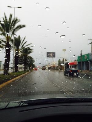 Conforme avanzaron las horas las vialidades se han visto despejadas. (Mario Hernández)