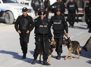 Las fuerzas de seguridad tunecinas se enfrentaron a los atacantes atrincherados en el museo, logrando abatirlos, pero en el asalto también fallecieron civiles.