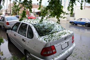 """Una vez que cesó el fenómeno natural, calles y fachadas de viviendas de muchas colonias de Torreón """"tapizadas"""" de hielo producto de la granizada y de hojas de árboles, poco visto en esta ciudad."""