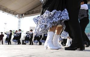 El primer colectivo en aparecer fue el Grupo de Danza Virgen de Guadalupe del Ejido La Unión.