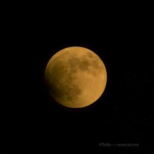 Al anochecer en La Laguna, la luna se tiñó de un tono rojizo.