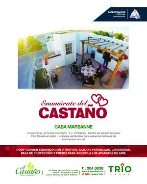 369614_PLANA CASAS TRIO
