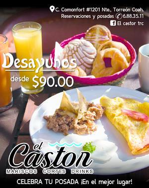 EL CASTOR 435470