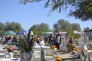 El cempasúchil, las gladiolas, crisantemos, la mano de león, entre otra variedad de flores que tradicionalmente forman parte de esta festividad, adornaron los panteones de la Comarca Lagunera.