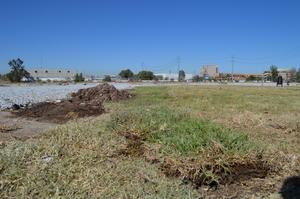 El problema de áreas secas se extiende a casi todo el lugar.