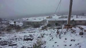 En Coahuila también se registraron nevadas en algunas zonas de Ocampo y Sierra Mojada.
