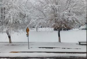 La nieve ha afectado las carreteras del estado.