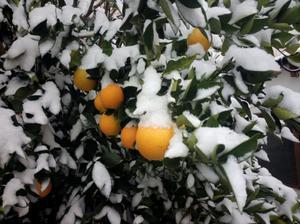 Se registraron temperaturas que oscilan entre los 2 grados bajo cero y 17 grados bajo cero.